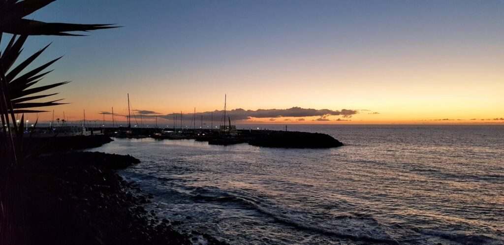 Puerto Colon harbour at dusk - where the majority of whales and dolphins depart on Tenerife