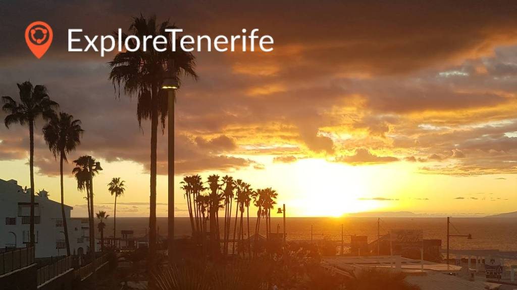 Book trips, tours, activities and excursions on Tenerife